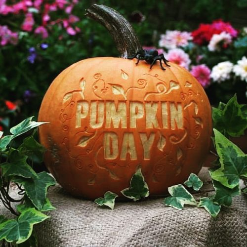 Pumpkin-Day