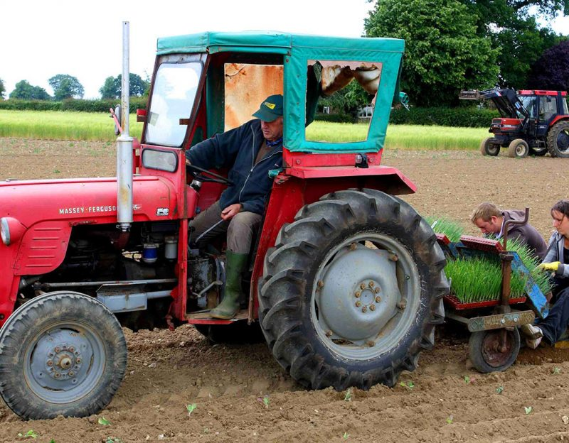 growing-veg-tractor