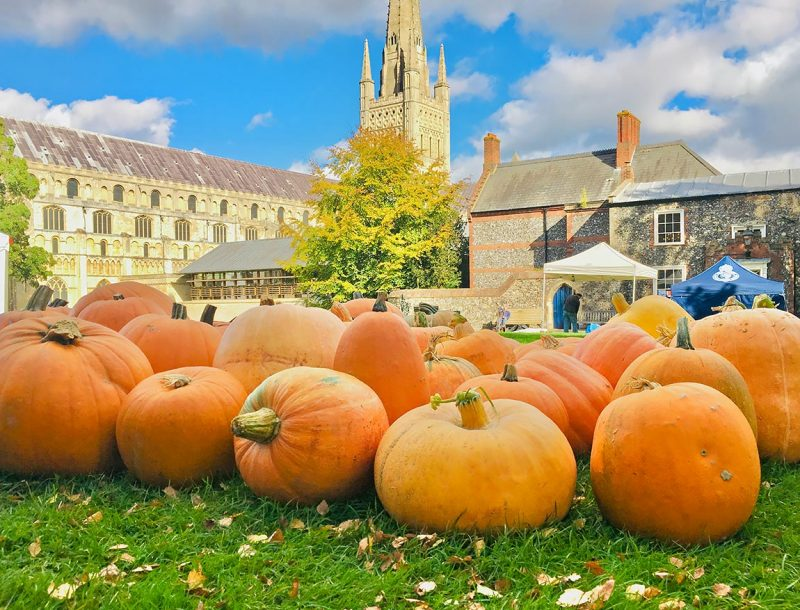 local-pumpkins-norwich